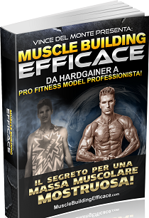 muscle building efficace
